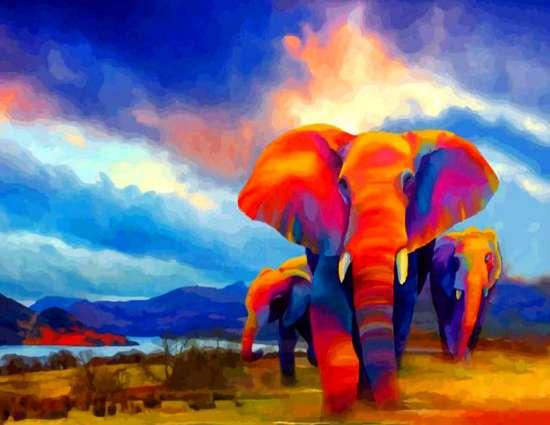 Картина по номерам 40x50 Большие разноцветные слоны